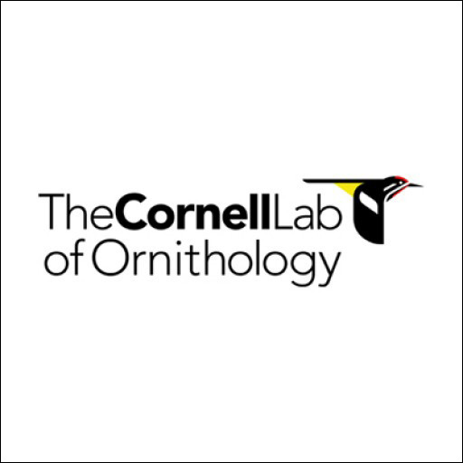 Cornell CahowCam Collaboration