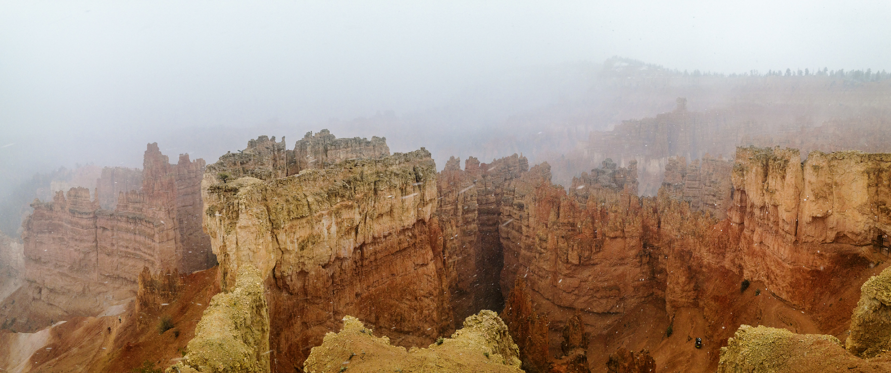 A very limited and snowy view of Bryce Canyon from the Rim trail.