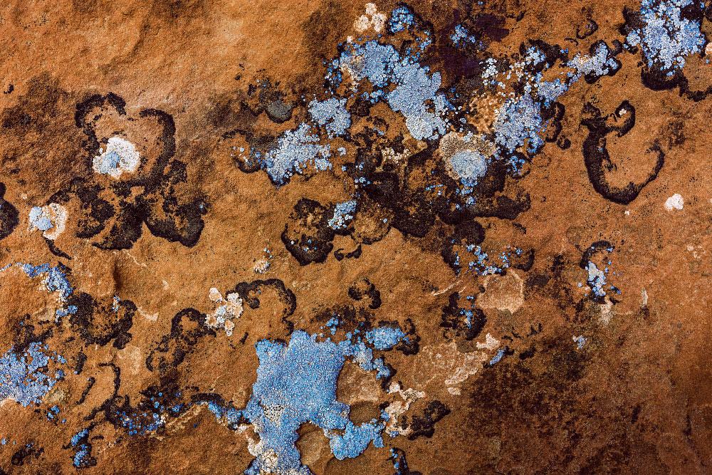 Lichen rock at Canyonlands National Park.