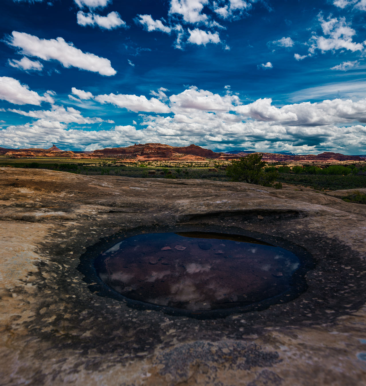 A natural pool after a rainstorm fills a rock crevice at Canyonlands National Park.