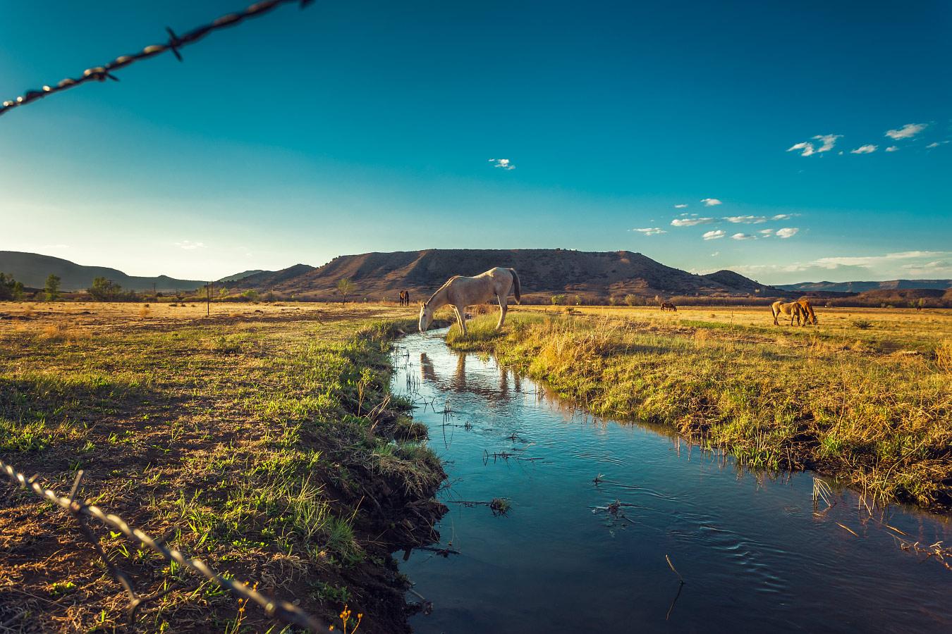 Horse Mesa Philmont Scout Ranch Cimarron New Mexico