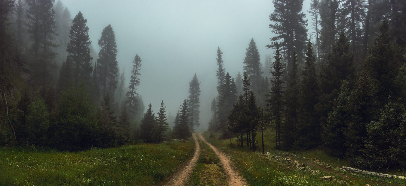 Foggy road to Phillips Junction via Fish Camp at Philmont Scout Ranch