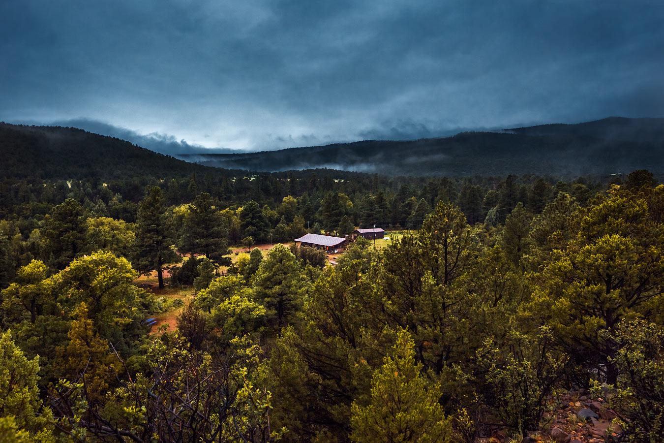 Foggy Zastrow cabin