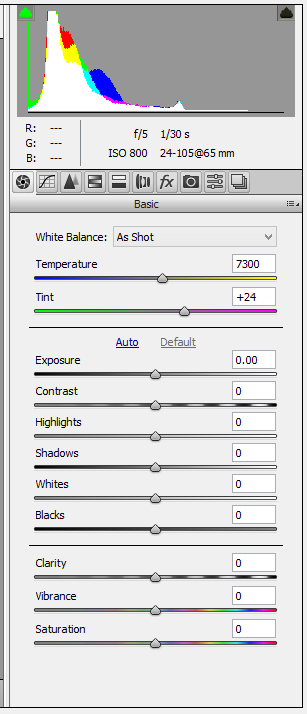 'Basic settings' panel in Camera Raw 9.1 with no adjustments.