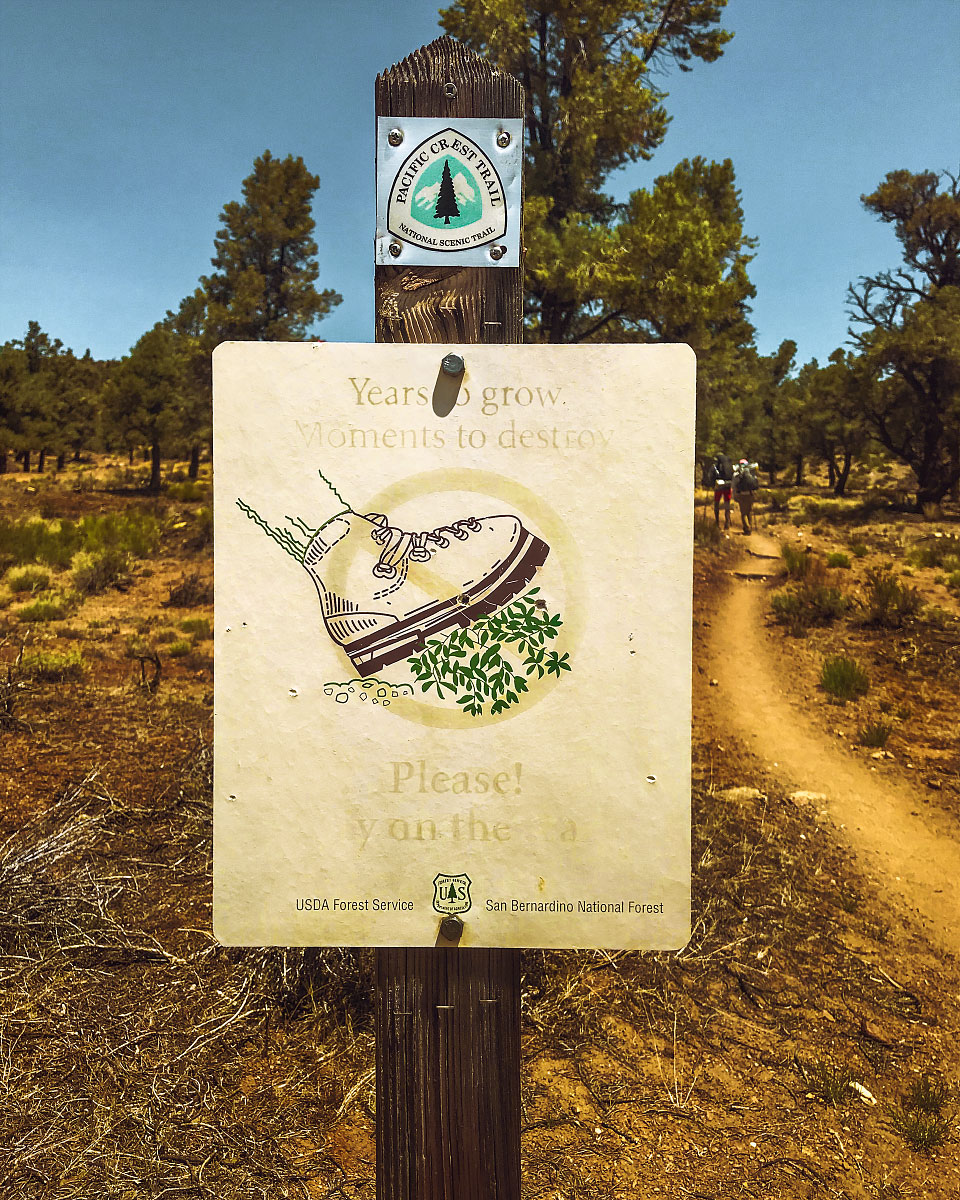 US Forest Service trail sign, mile 259.6.