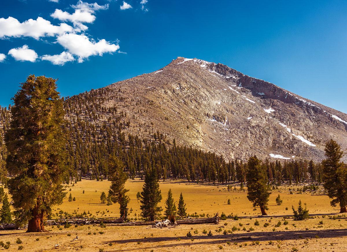 Mount Guyot.