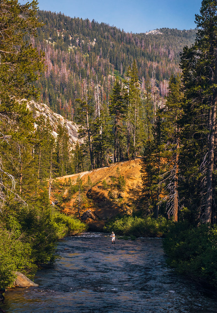 Fly fisherman on the Middle Fork San Joaquin River.