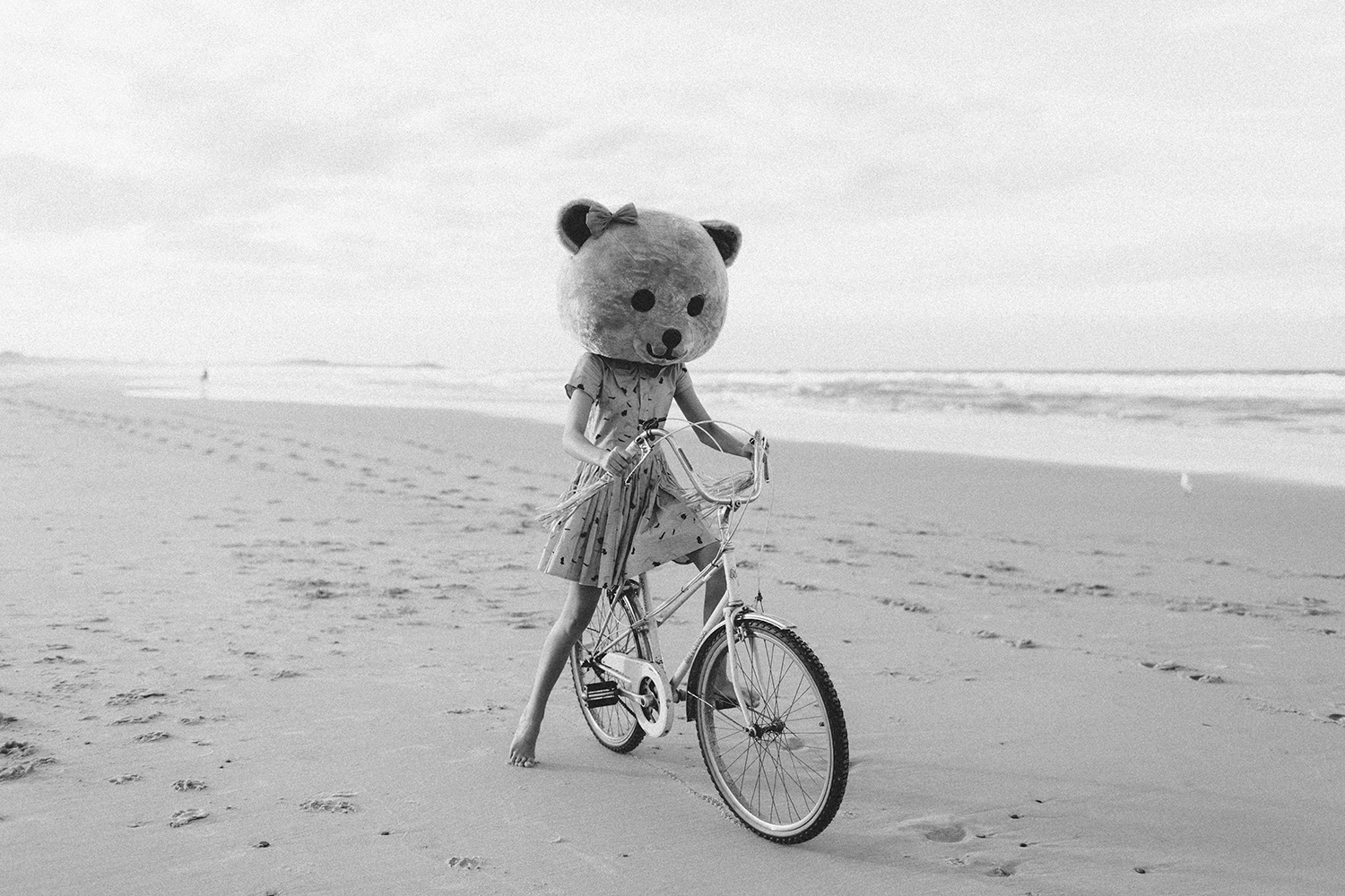 bike-and-bear-bw104.jpg