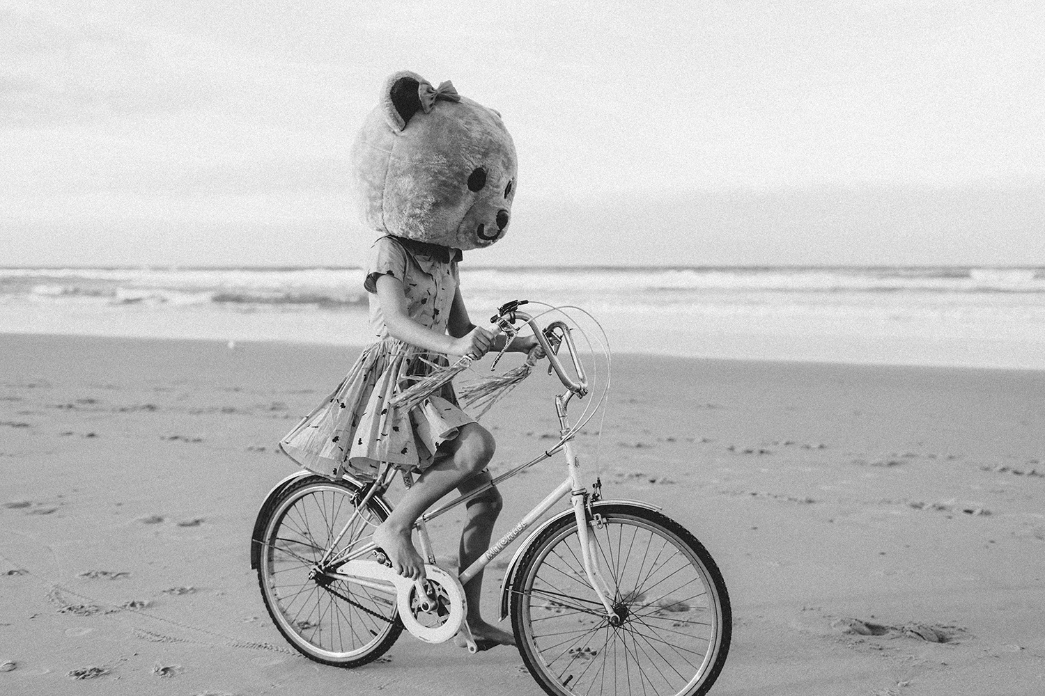 bike-and-bear-bw105.jpg