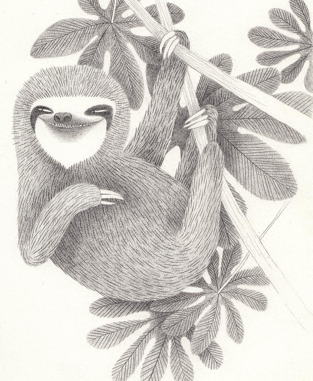 slothsketch_sm.jpg