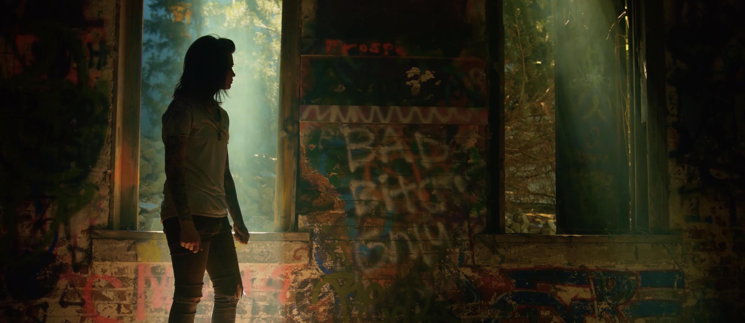 Renee Phoenix Swallow Music Video Window