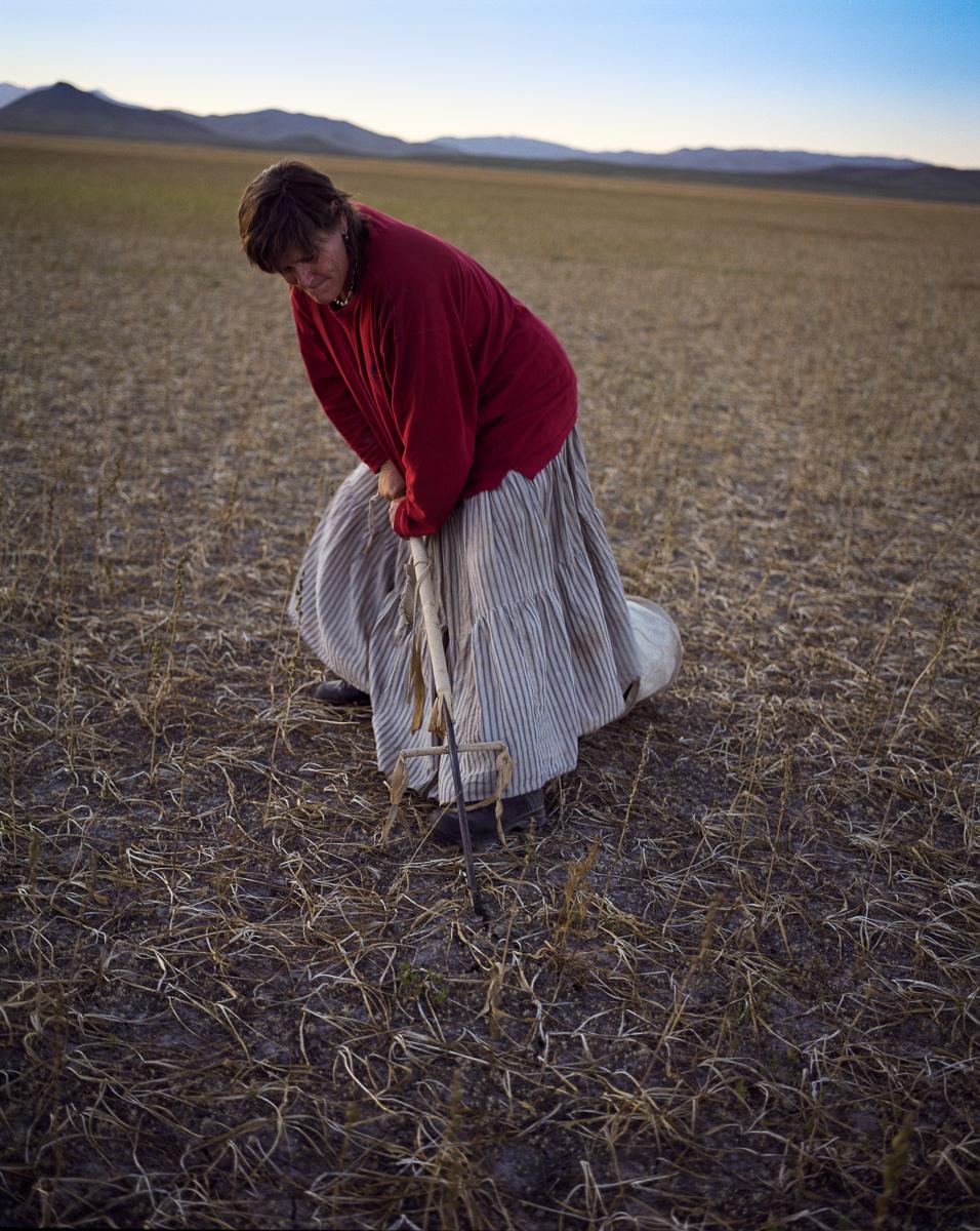 Camas Prairie  © Adrain Chesser
