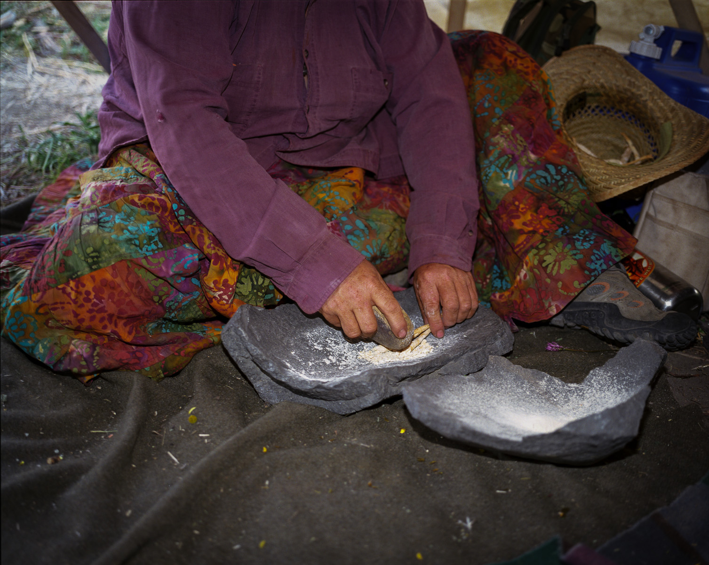 Grinding Breadroot  © Adrain Chesser