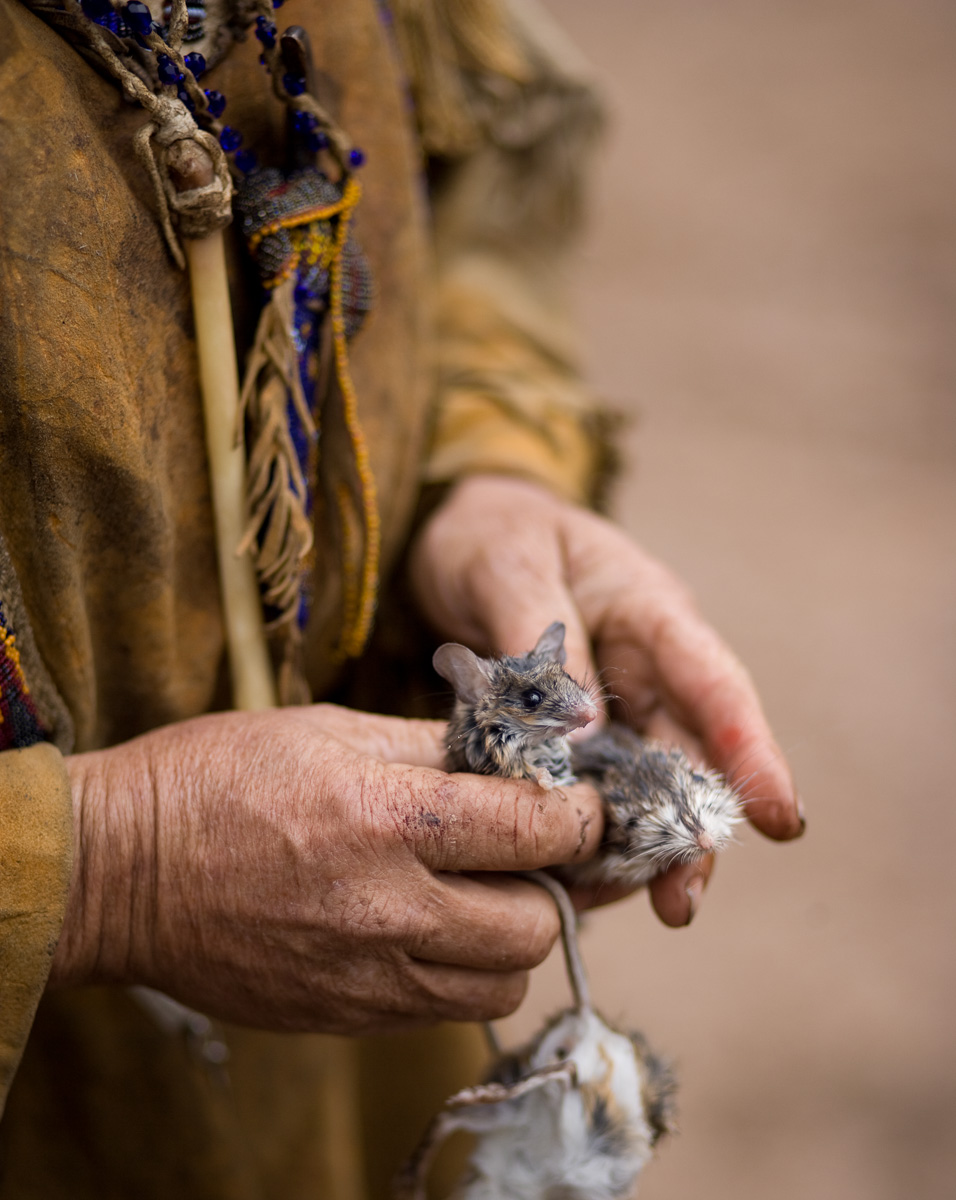 Mouse In Hand  © Adrain Chesser