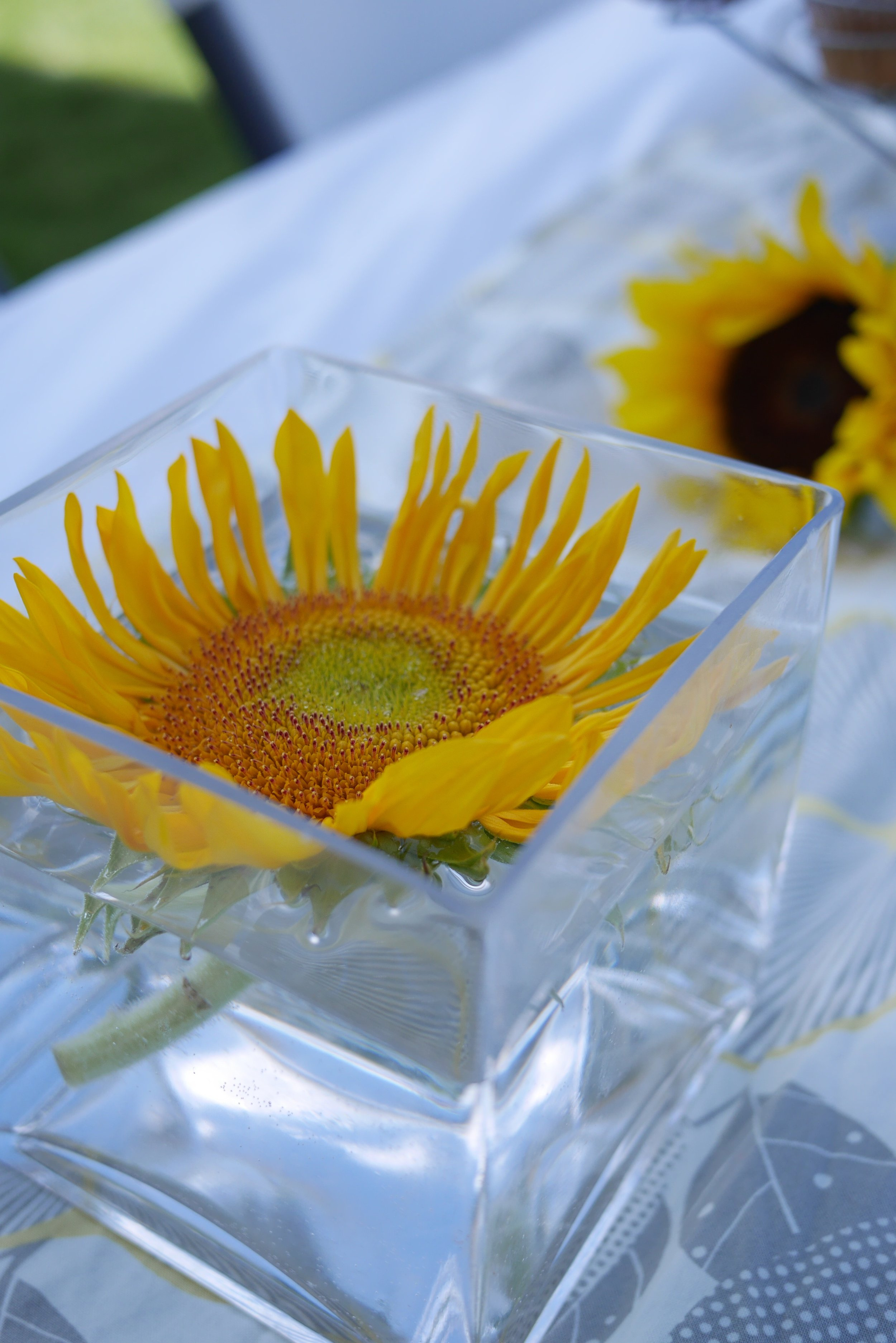 Sunflower_Baby_Shower