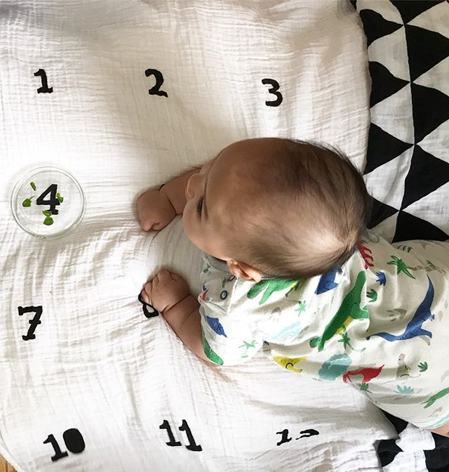 Happy four months, little Teddykins! #losthairdontcare💇‍♂️