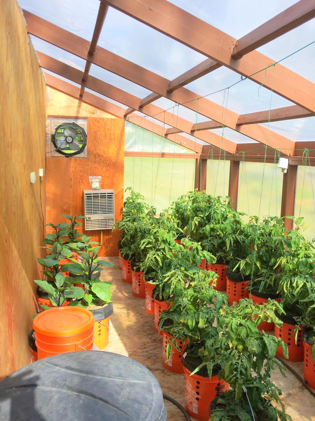 greenhouse 062214.jpg
