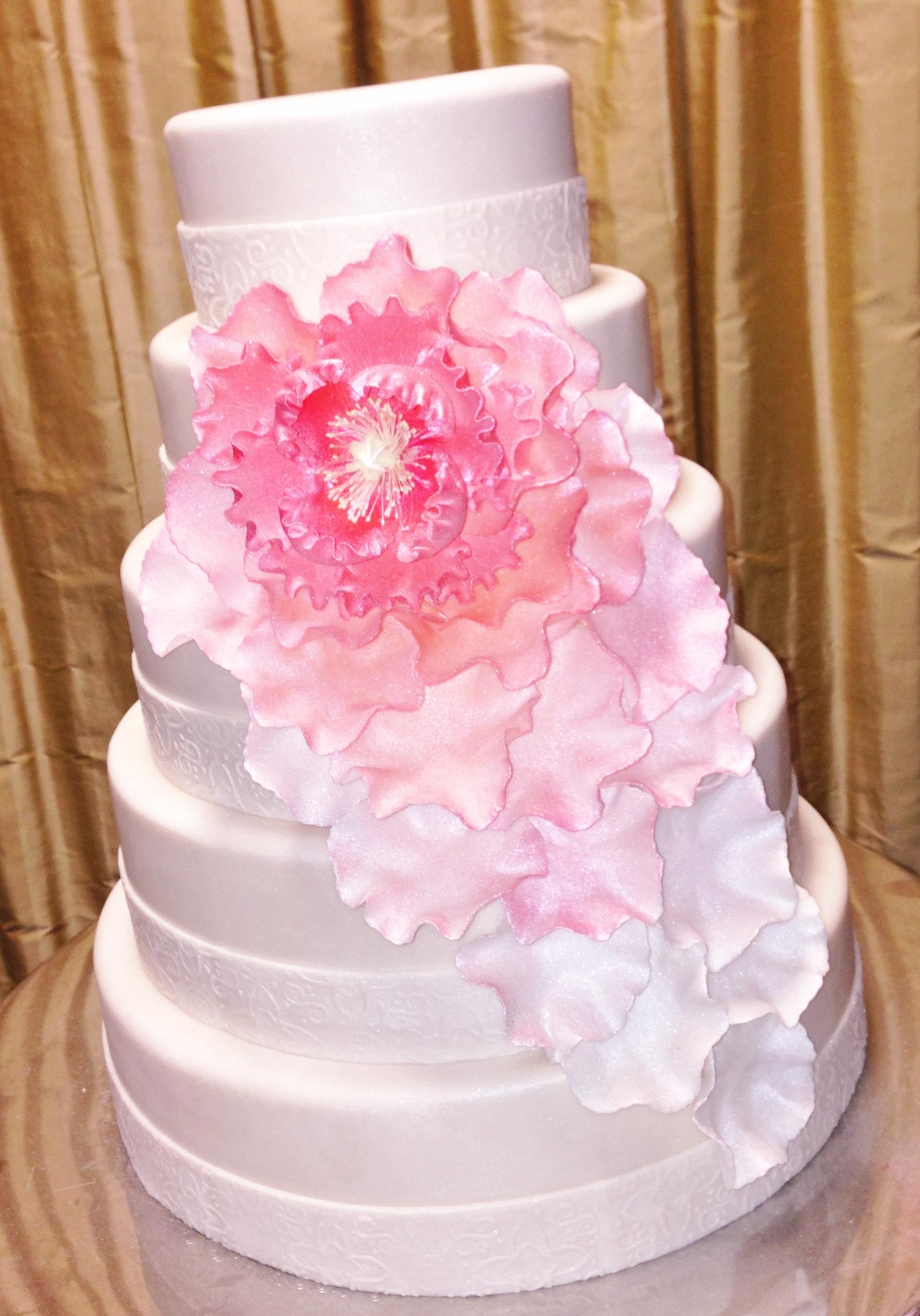 Pink Ombre Flower.JPG