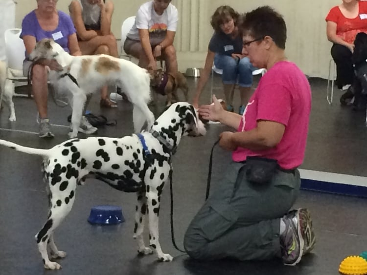 Oregon Coordinator Amy and her therapy dog Casey teaching a class.