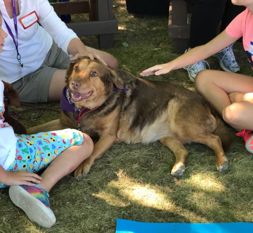 Therapy dog Ruby Rose and her handler Barbara visiting with children at a Bridges to Compassion session. Ruby Rose is a Lab mix.