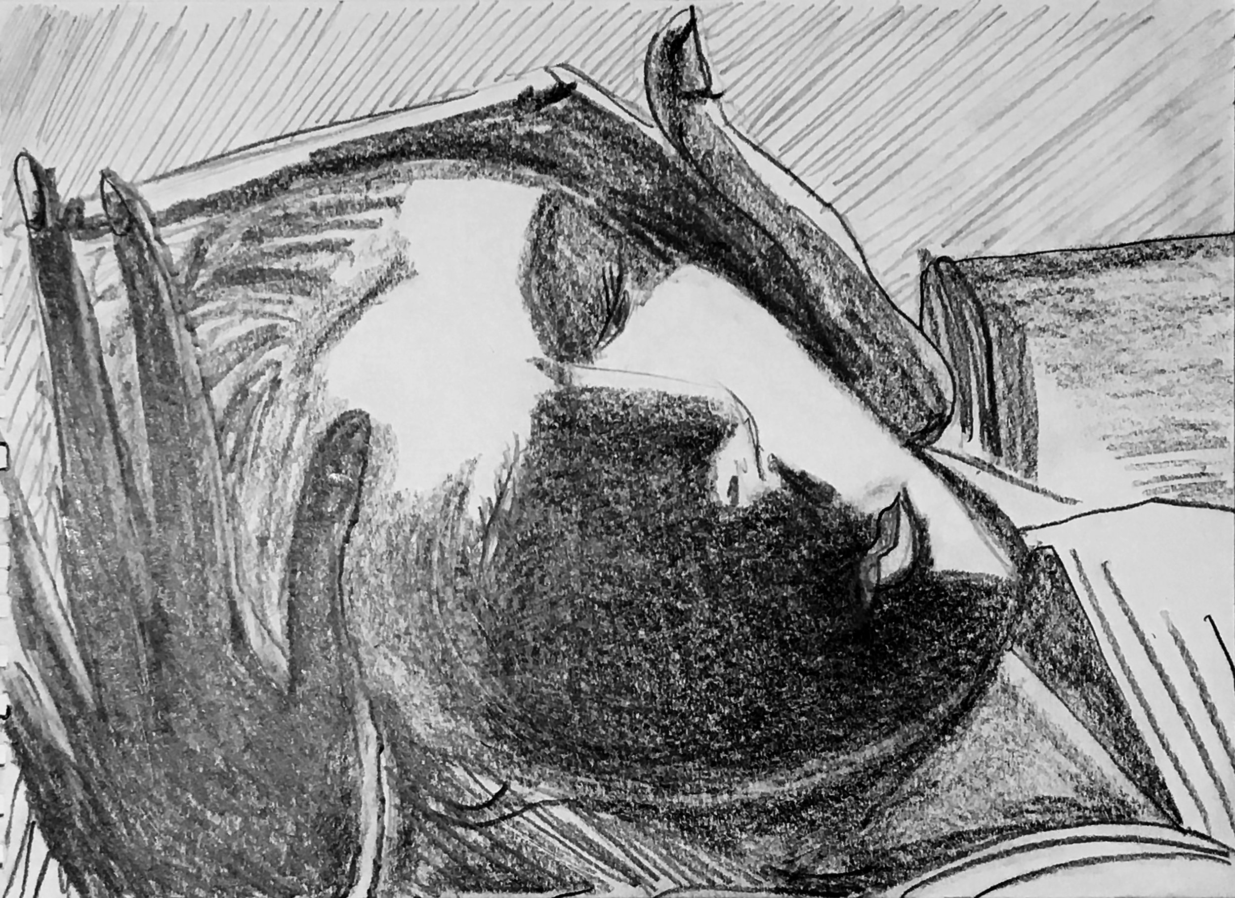 "Healing Hands, graphite on paper, 8"" x 6"", 2016"