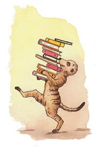 meerkat_website.jpg