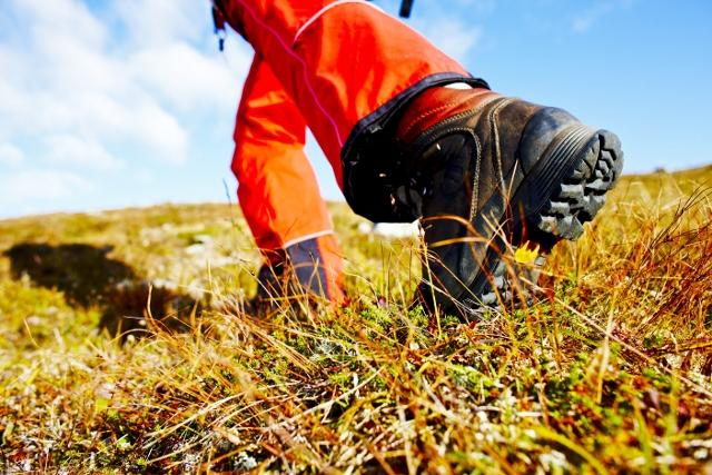 vandring og sykling - Bli med på tur i vårt vakre verdsarvområde. Er gruppa interessert i vandring kan vi anbefale Aurlandsdalen eller Flåmsdalen, og er det sykkel som er i interessant - anbefalar vi sjølvsagt Rallarvegen! Dette kan kombinerast med lunsjboksar frå oss, med ein guide frå vår søsterselskap FjordSafari Norway, og aktivitetar som Flåm Zipline!