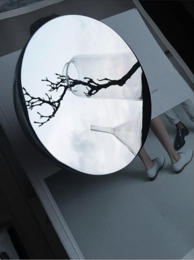 Mirror Reflections By Sarah Widman