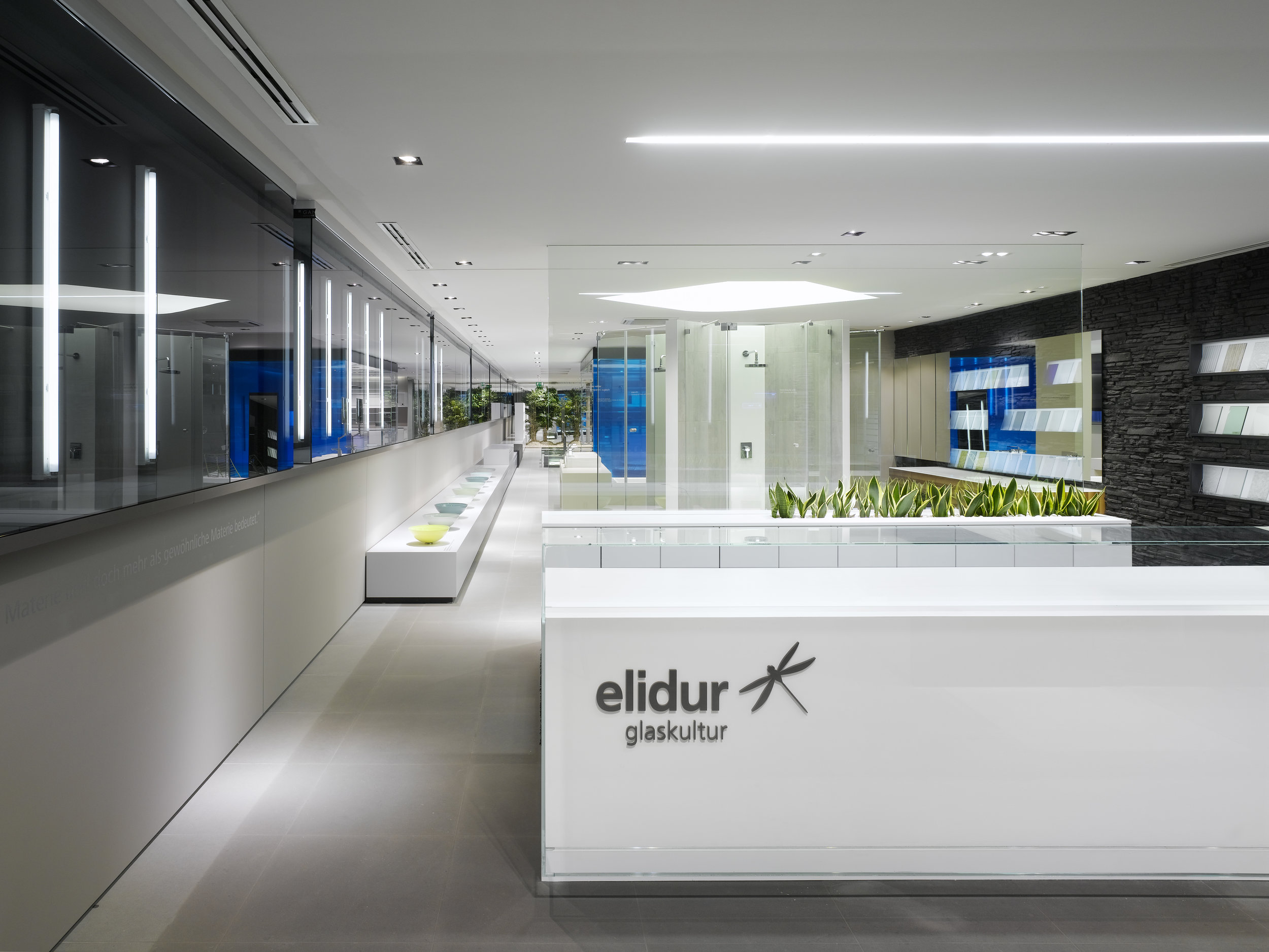 310-39-v_elidur_press.jpg