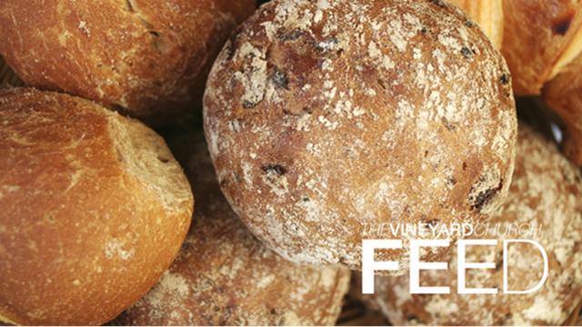 feed-logo-(640x360).jpg