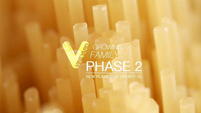 gfphase2-5.jpg