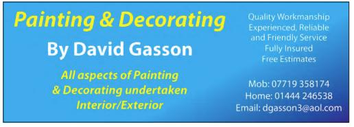 David Gasson Painter & Decorator.png
