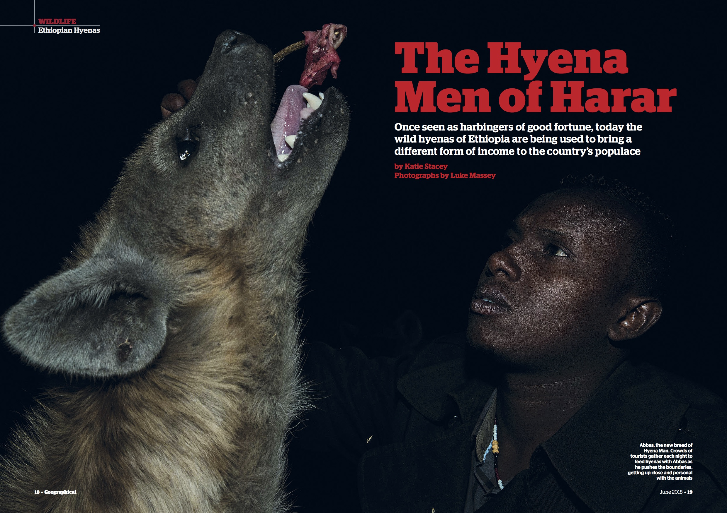 Feature - Ethiopia Hyenas.jpg