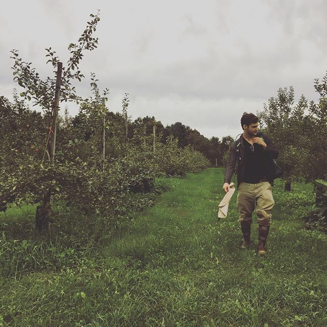 Season highlights: organic apples, berries, and honey at @westwindorchard