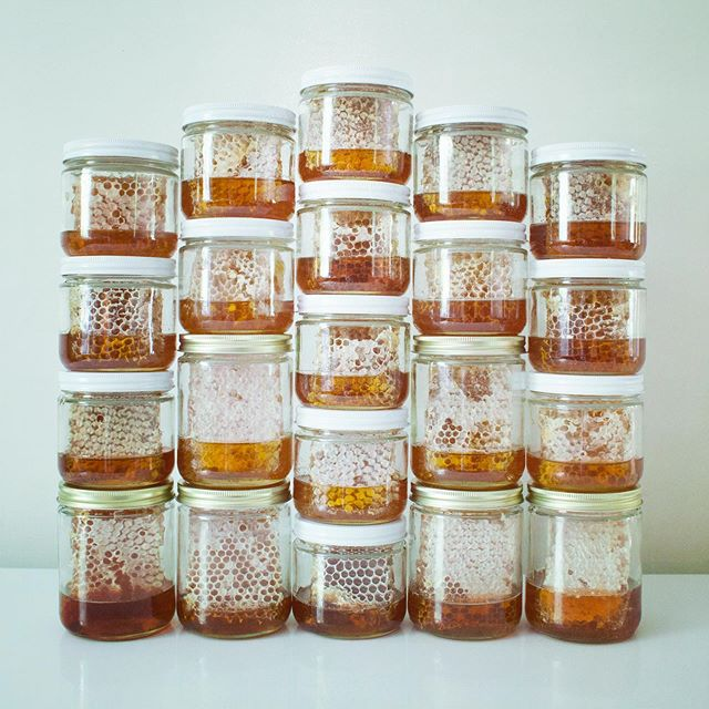 See my FB post for info on my honey bee journey, and get you some comb honey!  Link in profile.