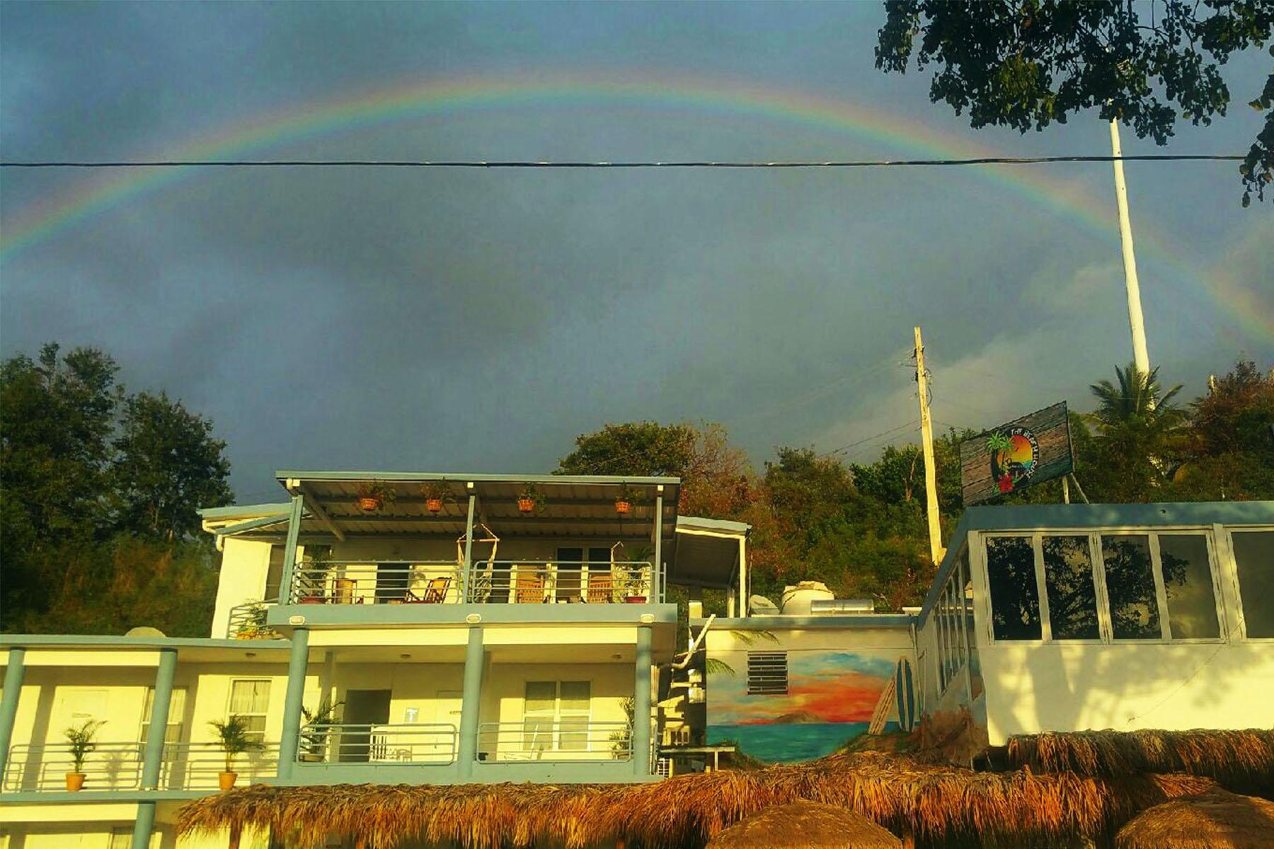 Rainbow rev.jpg