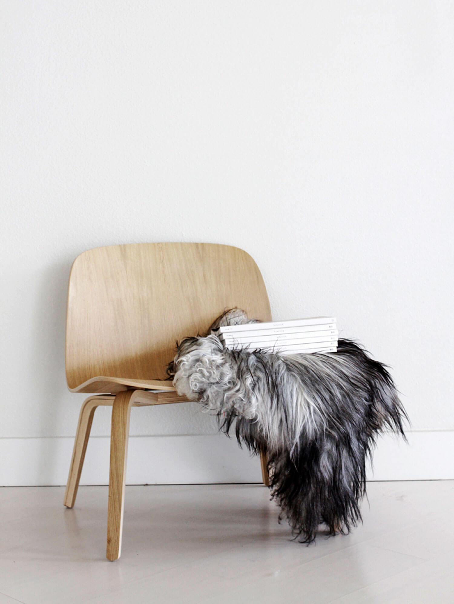 Visu-Lounge_Jennifer-Hagler_1_tinyjpg.jpg