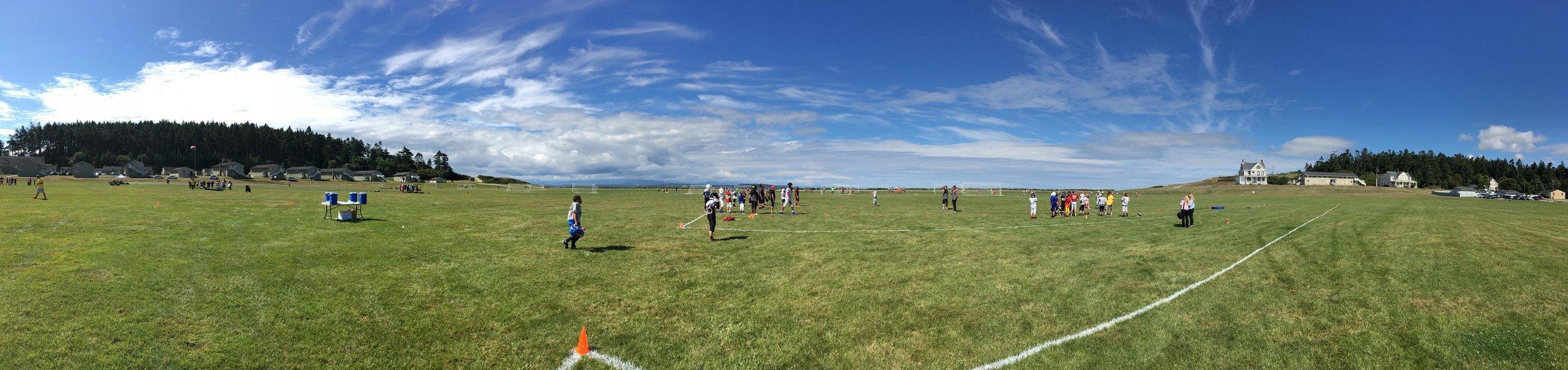 field 3.jpg