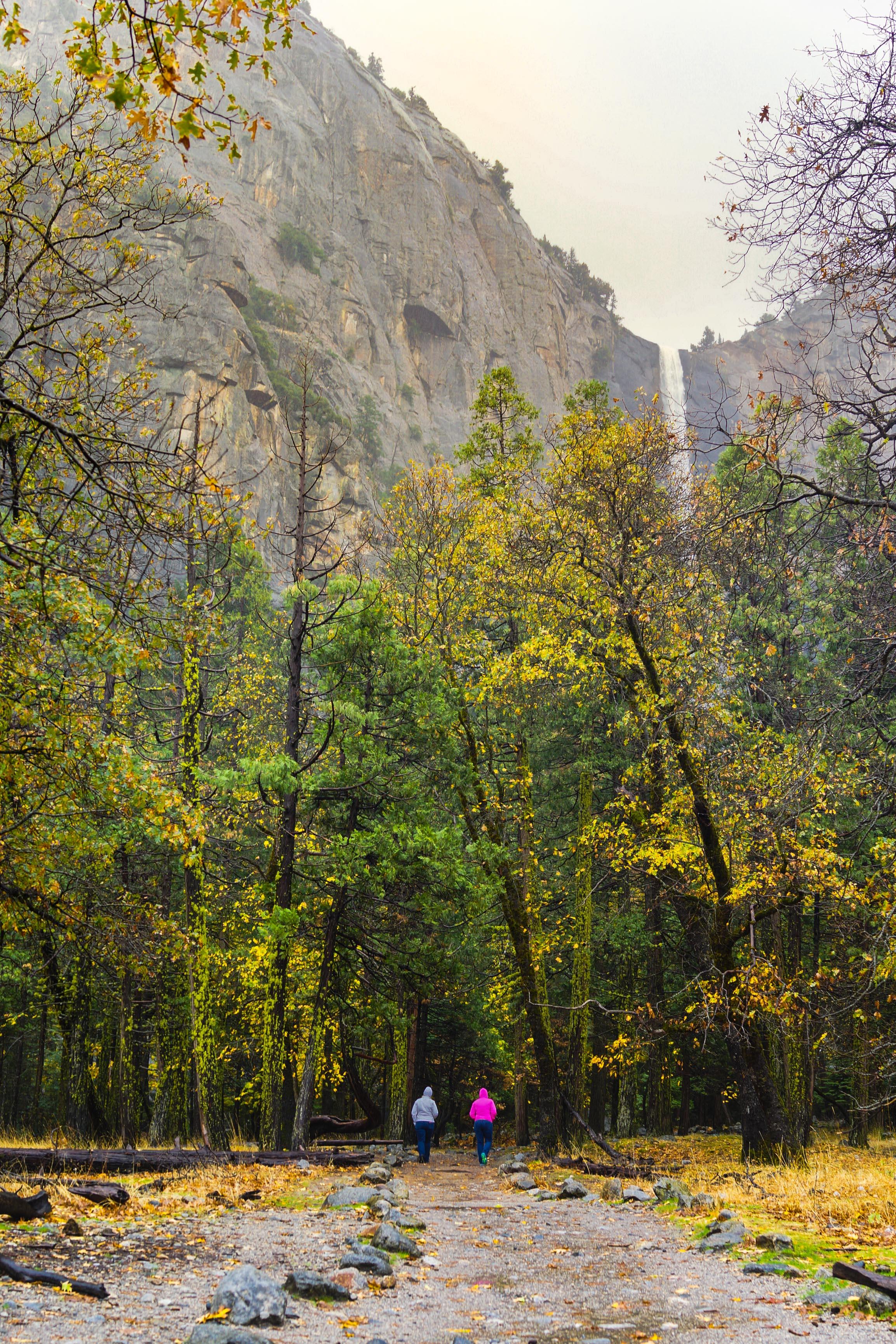 The trail to Bridalveil Fall.