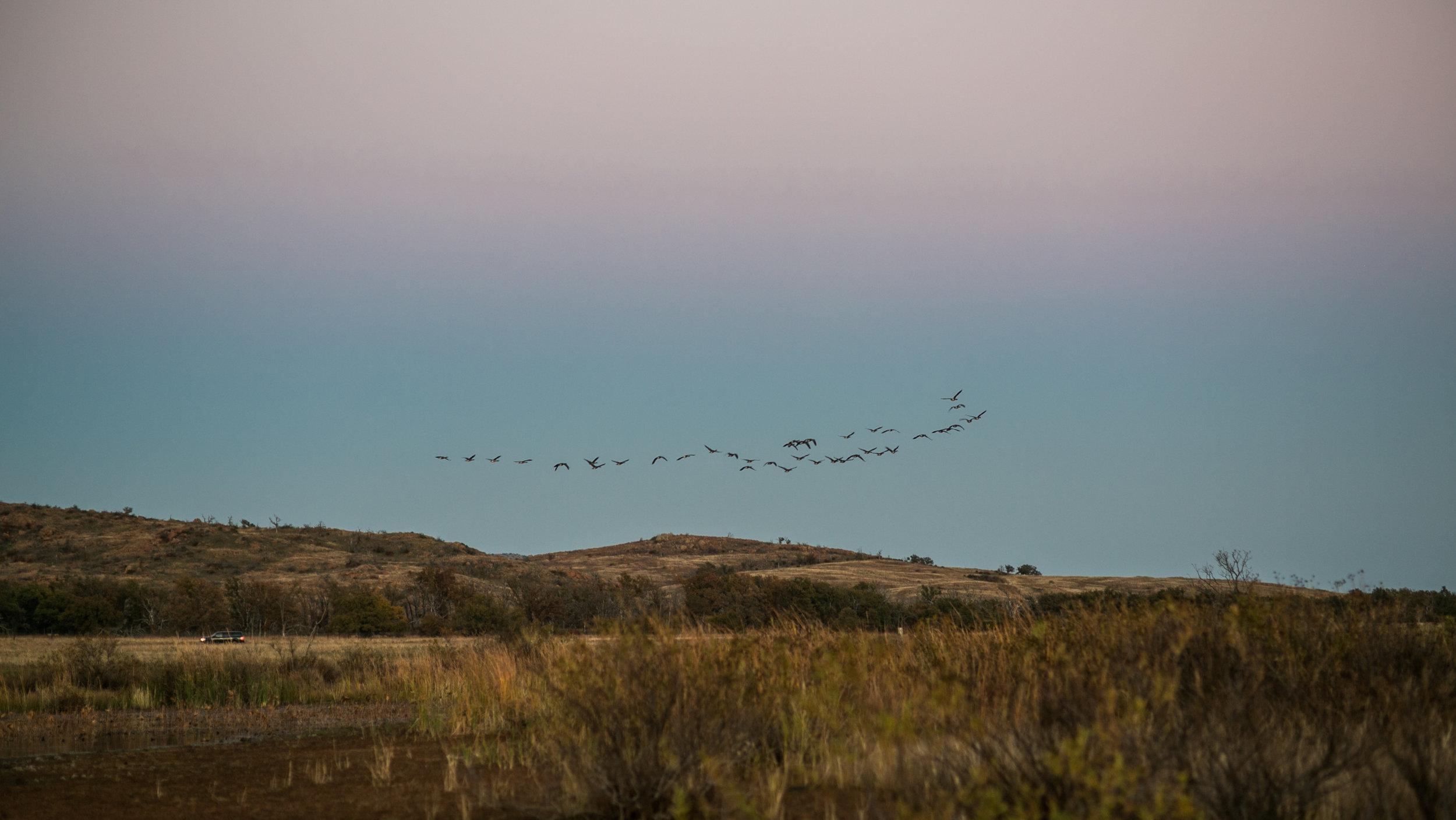 Wichita Mountain Wildlife Refuge