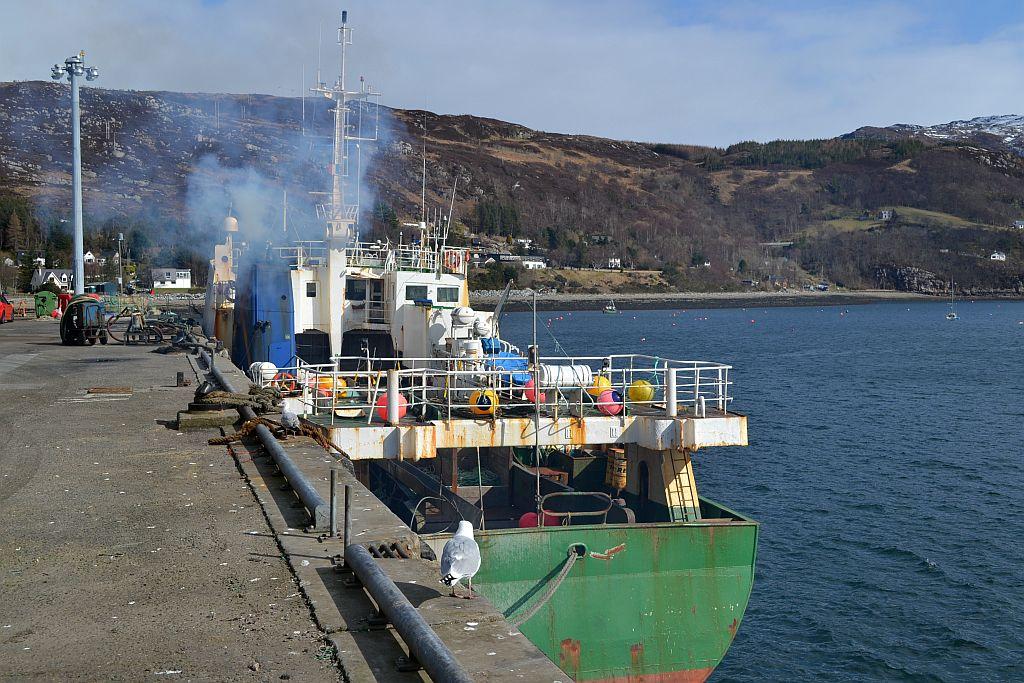 Ullapool Harbour.jpg