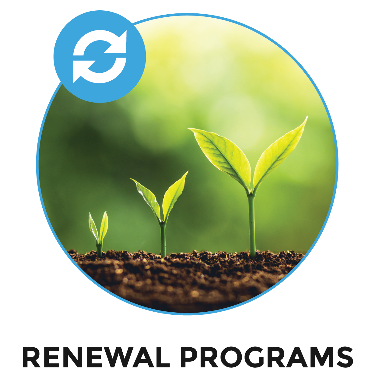 Renewal Programs