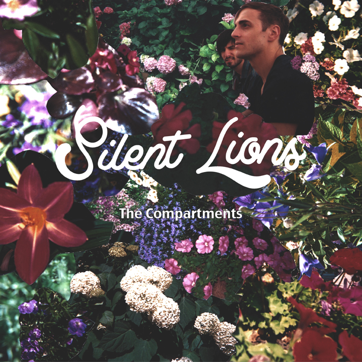 Silent lions - the compartments