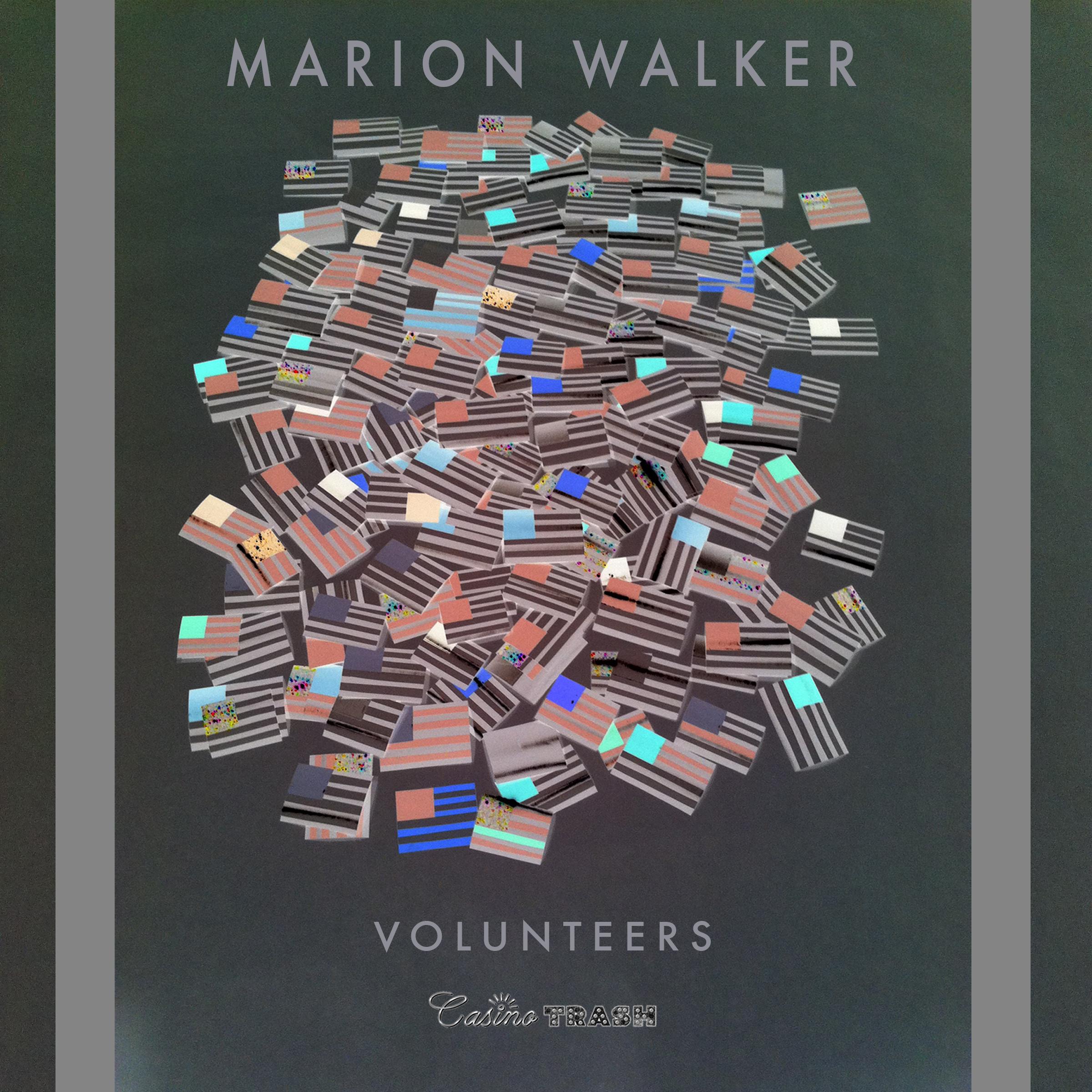 MarionWalker_Volunteers_coverart.jpg