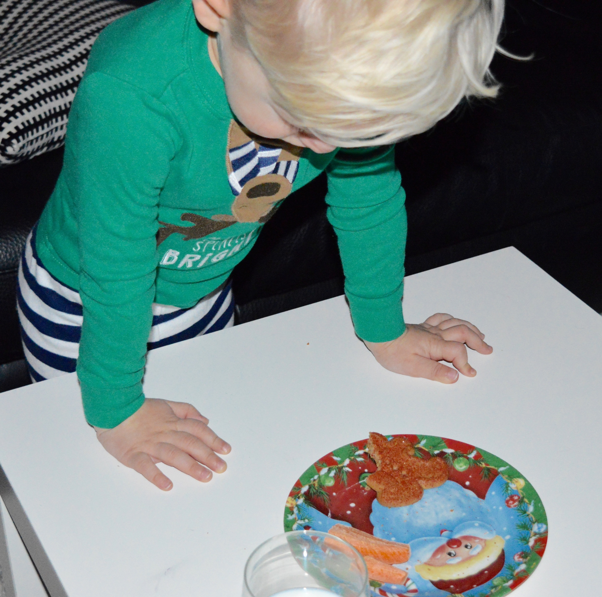 He checked what Santa and the reindeer ended up eating!