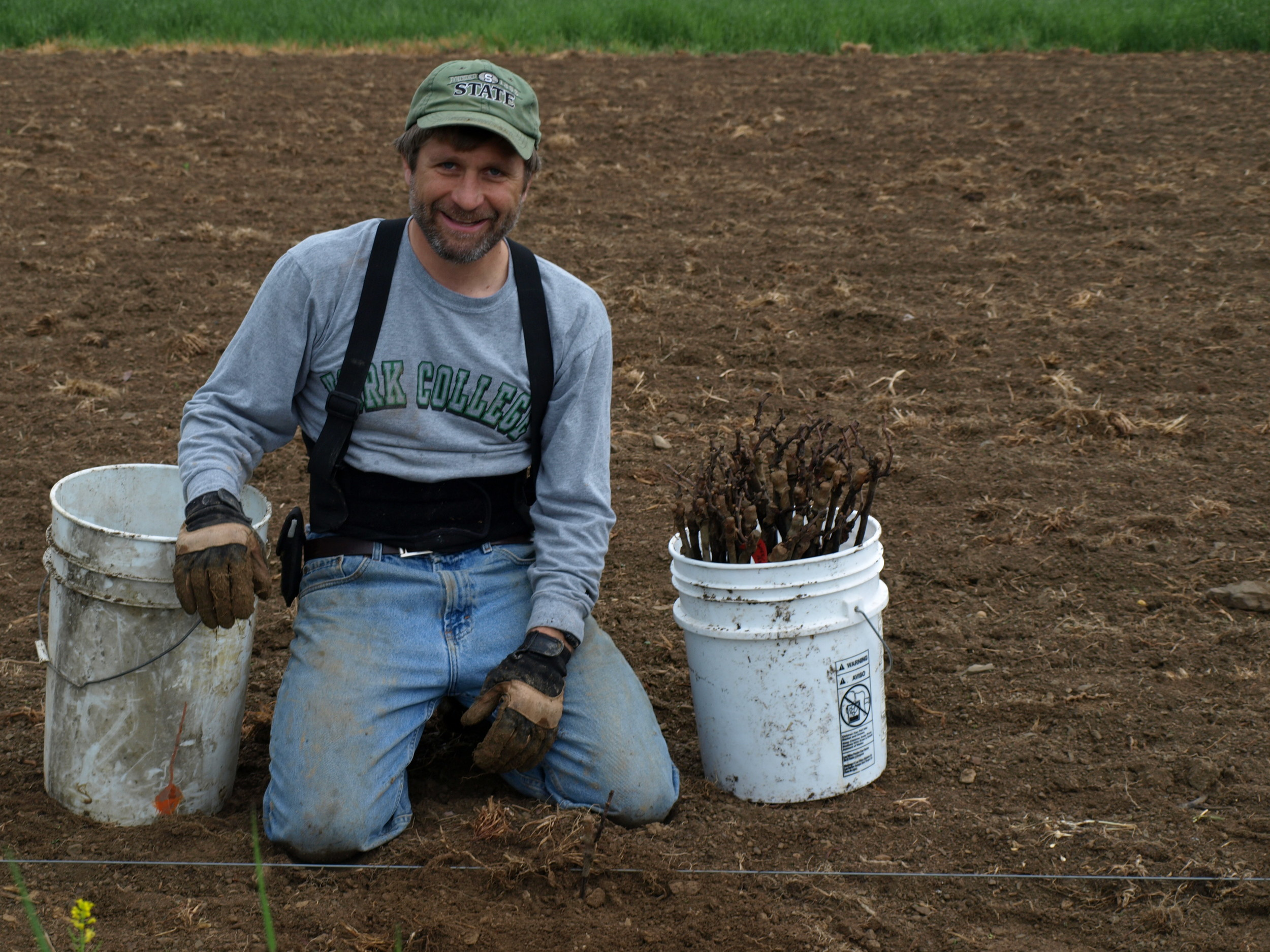 Planting 2008.jpg