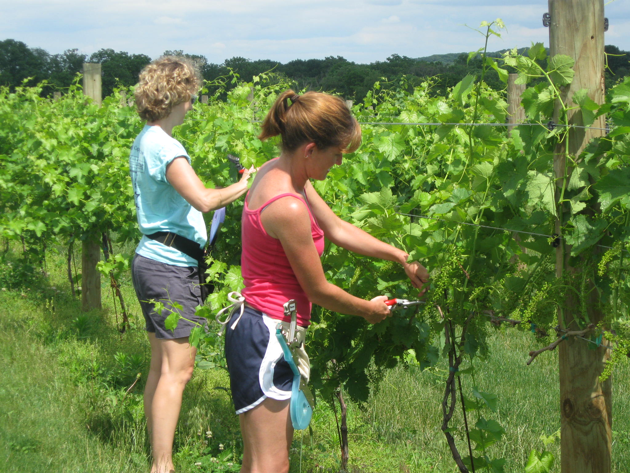 Becky and Jody Pruning.JPG