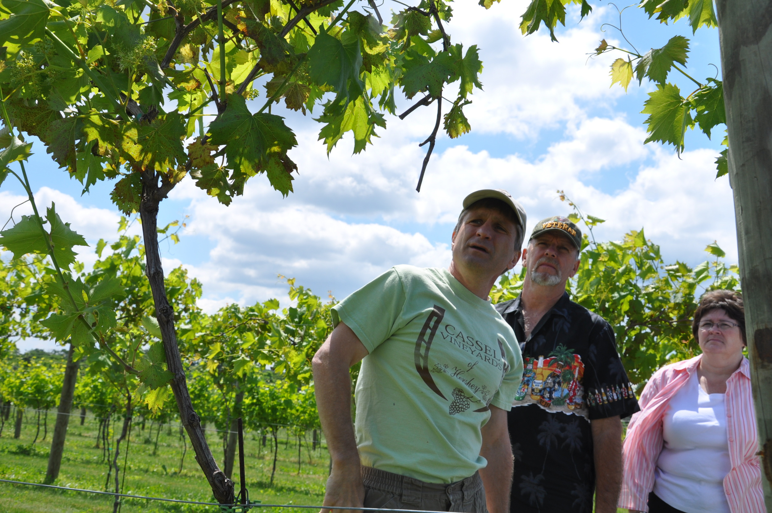 Vineyard Tour.JPG