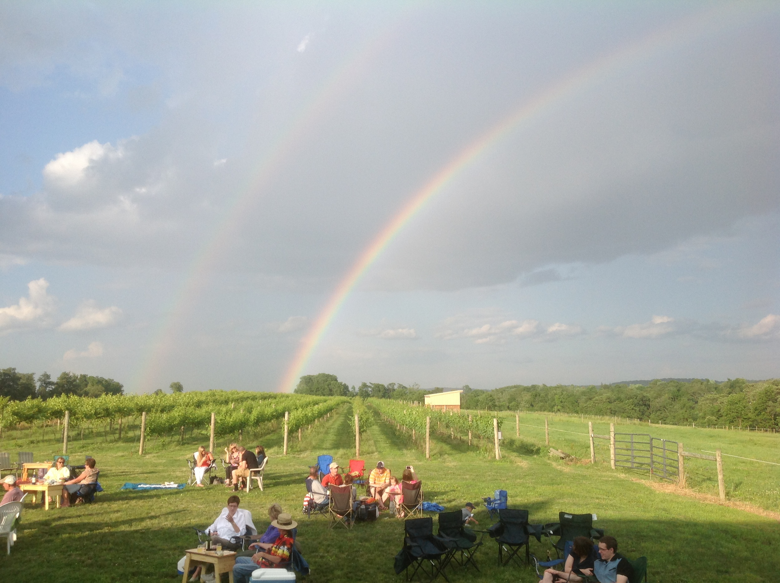 rainbow over the vineyard.JPG