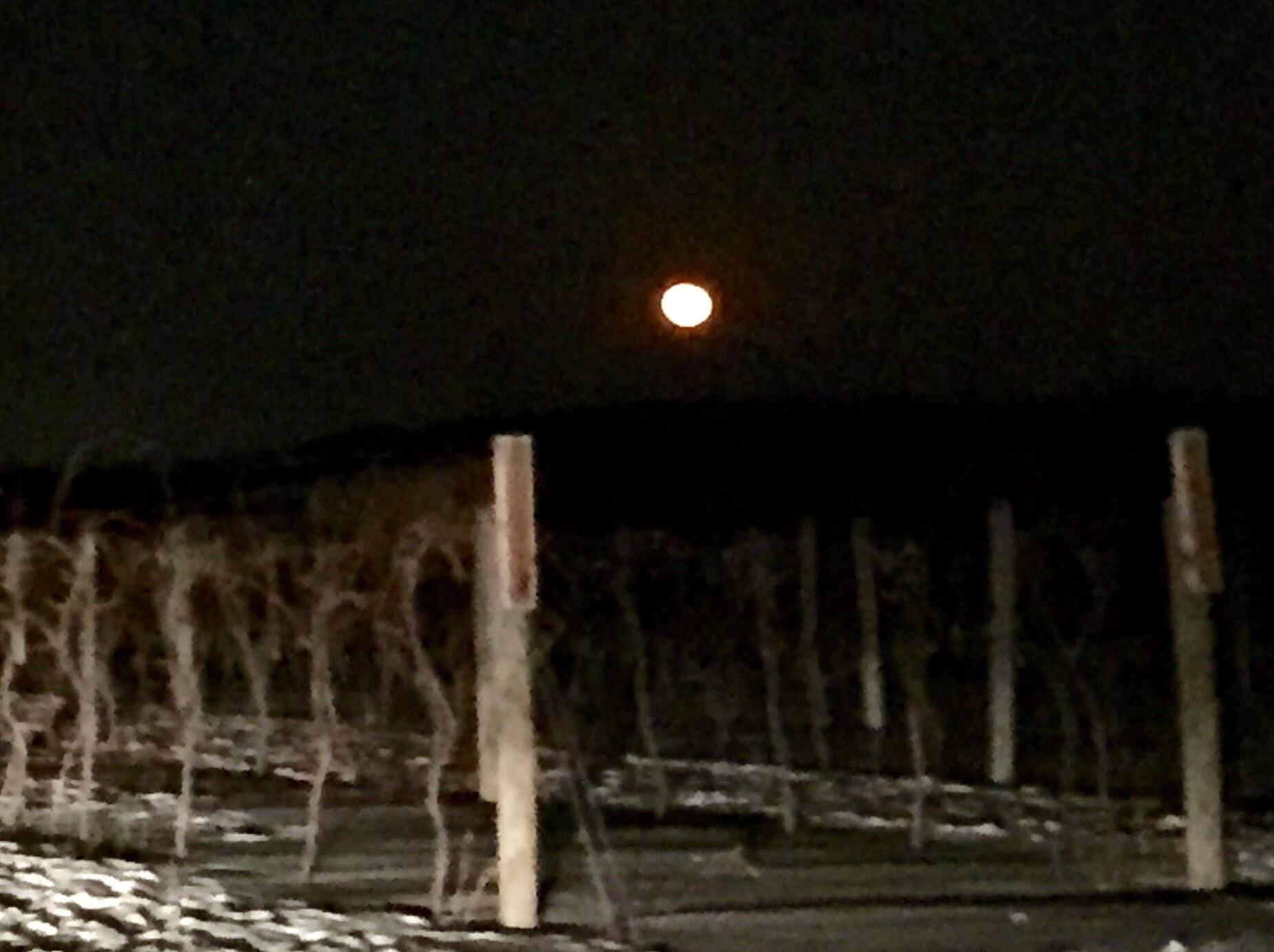 The last full moon Winter of 2015